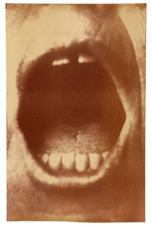 Untitled (#8), 1993. Graciela Sacco (Argentinian, born 1956). Heliograph print, 71.5 × 45.4 cm (28 1/8 × 17 7/8 in.) The J. Paul Getty Museum, Los Angeles, Purchased with funds provided by the Photographs Council. © Graciela Sacco.