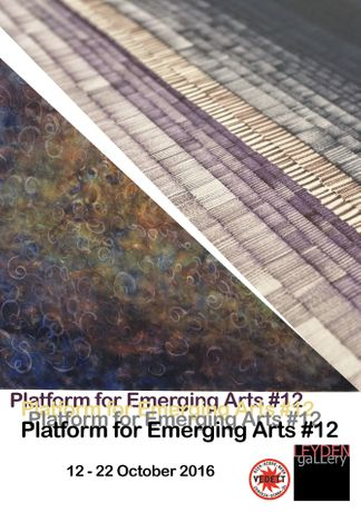 Platform For Emerging Arts 12