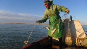 Points of Listening with Peter Cusack: Aral Sea Stories