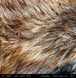 Polly Morgan: Endless Plains