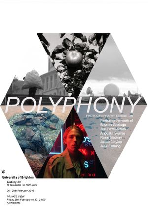 Exhibition title: Polyphony  Artists involved: Jacob Clayton, Jack Fleming, Bayram Gozlugo, Rosie Mackay, Joe  Pettet-Smith, Angelika Siemie
