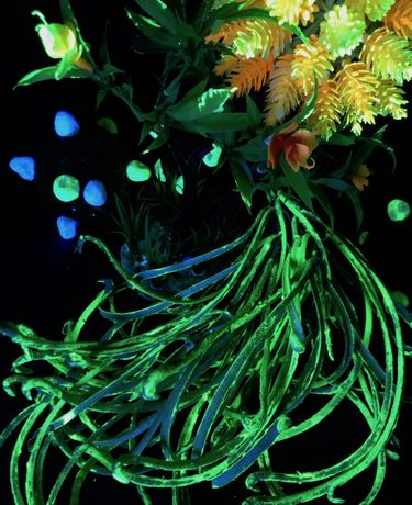 Cecile Chong, _other Nature (detail), 2020, installation with steel fence, artificial flora, plaster and encaustic sculptures, blacklight, video projection, and audio track. Dimensions variable. Courtesy of the artist.
