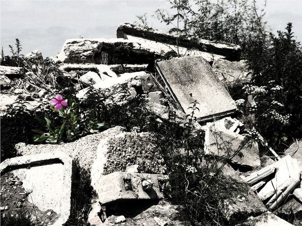 Rubble: Image 0