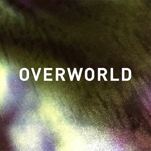 Ry David Bradley. Overworld