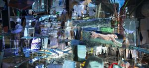 Sarah Sze: Afterimage