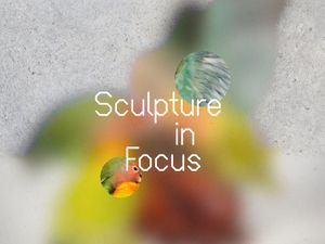 Sculpture in Focus