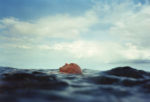Sea Swim: Head Above Water