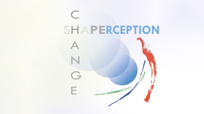 Shape, Change, Perception: Image 0