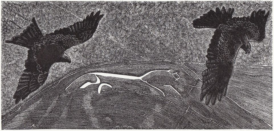 White Horse Red Kites, Wood Engraving, Andy English