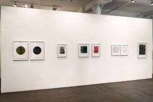 Summer Selections at Art Projects International, New York, 2018.