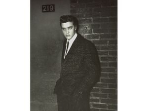 Elvis by Editta Sherman