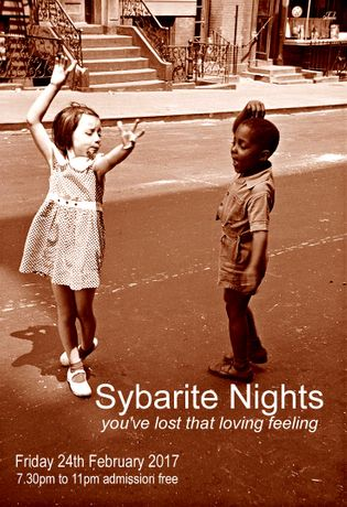 Sybarite Nights: Image 0