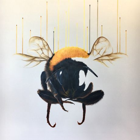 Louise McNaught - Buzzkill