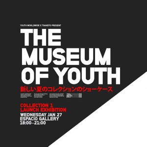 The Museum Of Youth