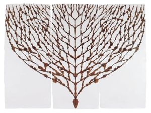Peter Randall-Page, Blood Tree 1 2013 (burnt sienna ink on paper) 255cms x 198cms