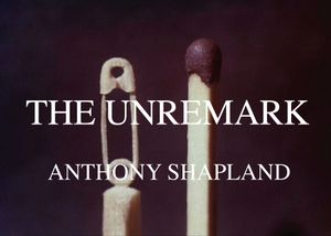 The Unremark: Anthony Shapland