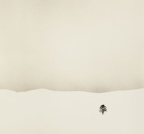 Tim Rudman: A Walk on the White Side: Image 0