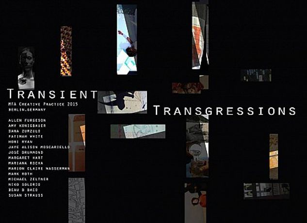 TRANSIENT TRANSGRESSIONS: Image 0