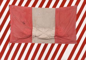 Eduardo Tokeshi, Bandera Uno , 1985. Latex on canvas