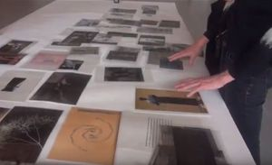 Transparencies: A Process Of Parallels, With Siobhan Davies
