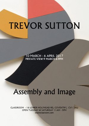 Trevor Sutton: Assembly and Image