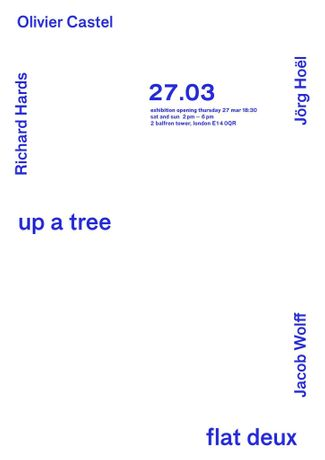 up a tree: Image 0