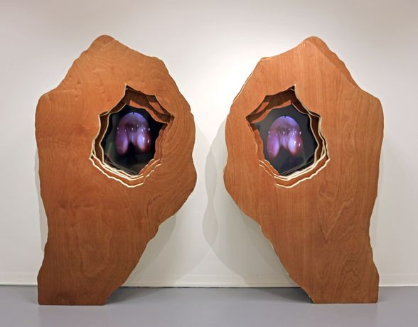 Olivia Turner, Eyepiece, 2017, wood and video, 201x260x45cm. Photo: Jed Buttress