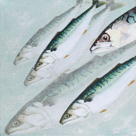 Mackerel; Valerie Wall. The Reality of Nature