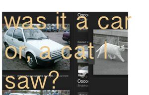 Was it a car, or a cat I saw?