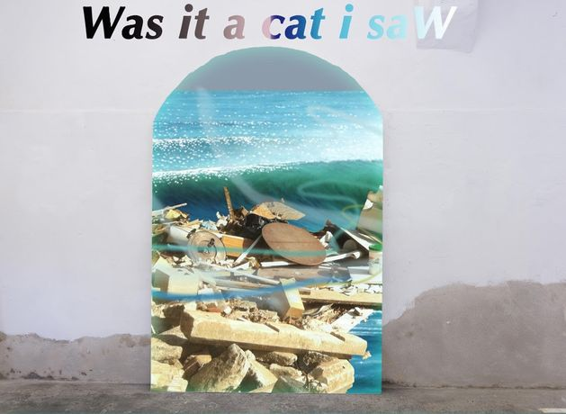 Was it a cat i saW?: Image 0
