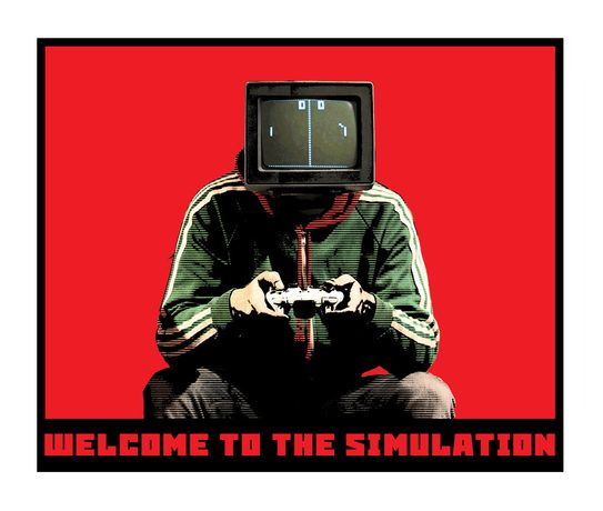 Welcome to the Simulation by Leo Boyd