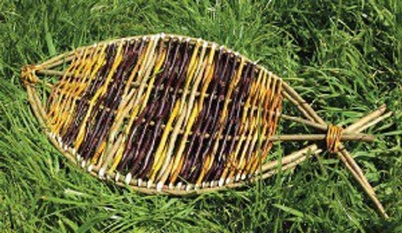Willow Fish: Image 0