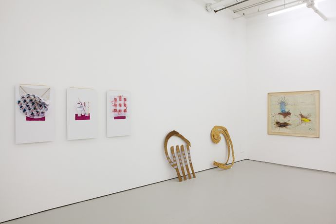 Richard Tuttle and Goutam Ghosh, Installation view Thinking Tantra, Drawing Room 2016.