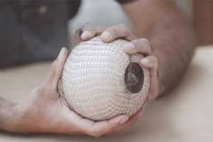 Hands holding a white ceramic round object covered in netting.