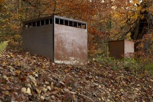 Alfredo Jaar, The Garden of Good and Evil, a rusting metal cube sculpture situated on a hill of fallen leaves, with an opening that wraps around the sides of the structure, near the top.