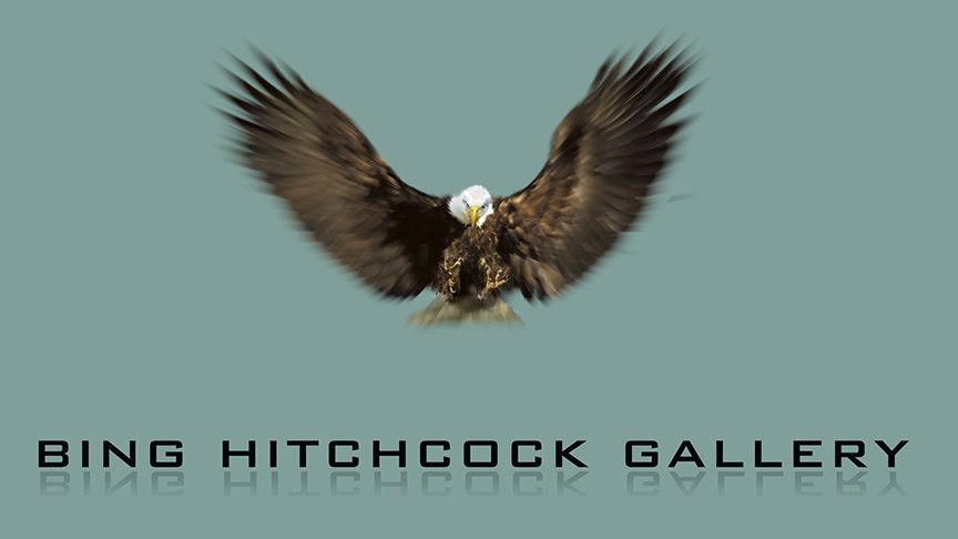 BING HITCHCOCK GALLERY